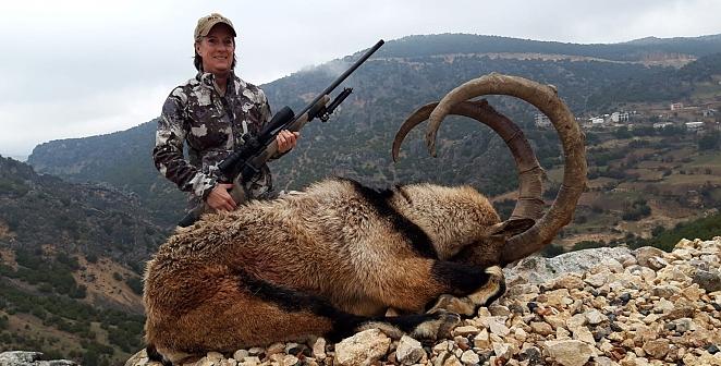 130 cm boynuzlu keçi