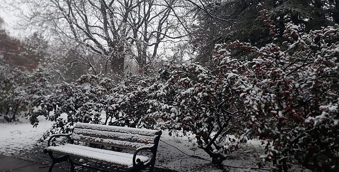 Ankara'da karlı gün