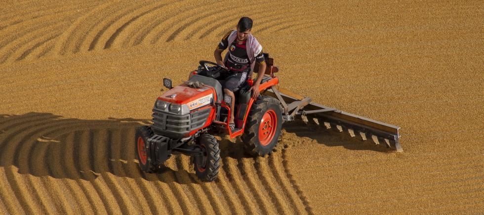 Buğdayın stoklanması, bulgur üretimini etkiledi