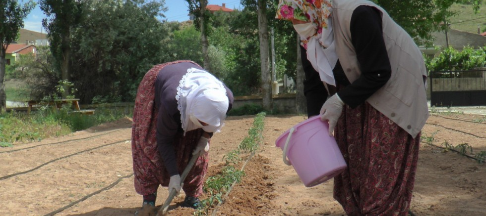 Çiftçi kadınlar pandemide de üretmeye devam ediyor