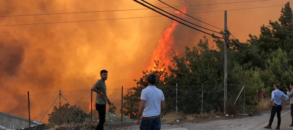İskenderun'da bir orman yangını daha