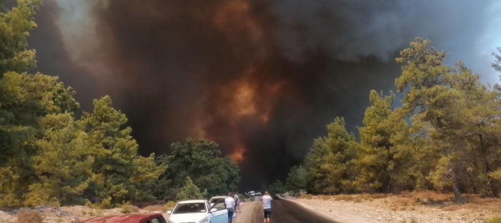 Manavgat'taki orman yangını çok yönlü araştırılıyor