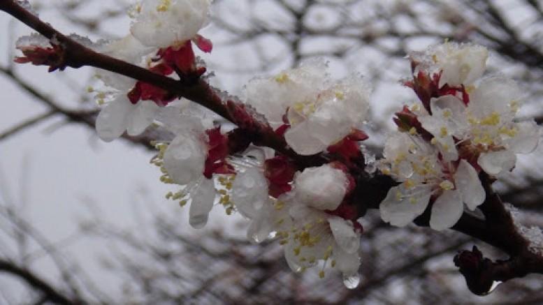 Mart ayında kar uyarısı