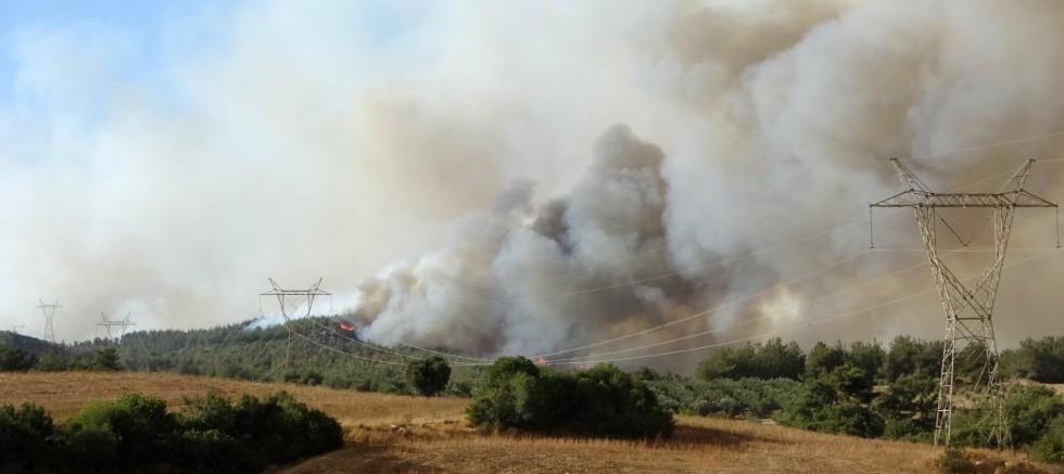 Osmaniye'deki orman yangını