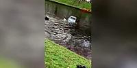 Kanala düşen çifti kurtardı